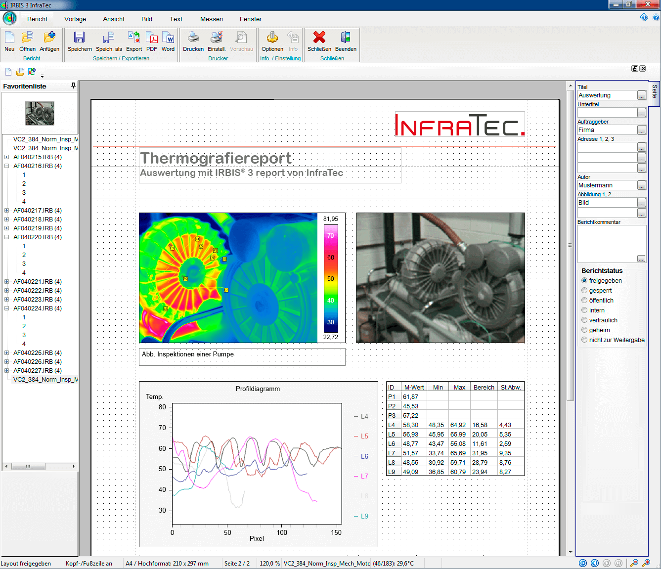 Thermografie-Software IRBIS® 3 report