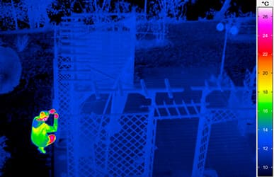 thermal imaging for security tasks