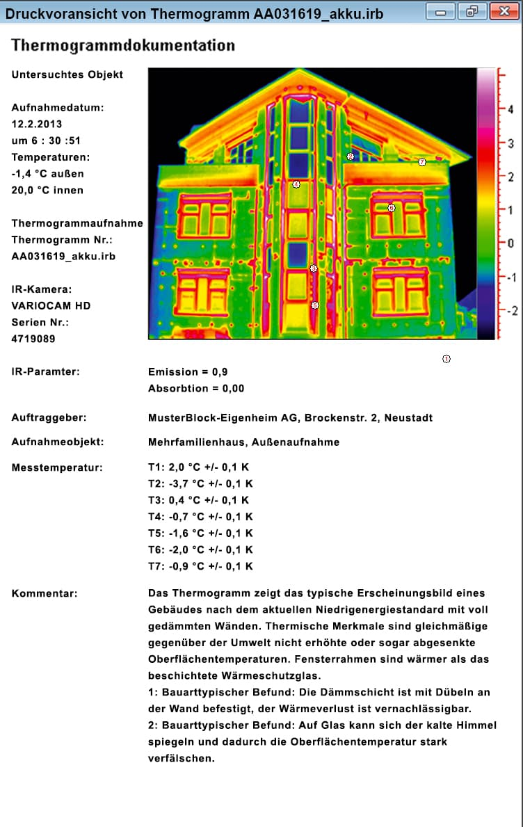 Report from the thermographic software FORNAX 2