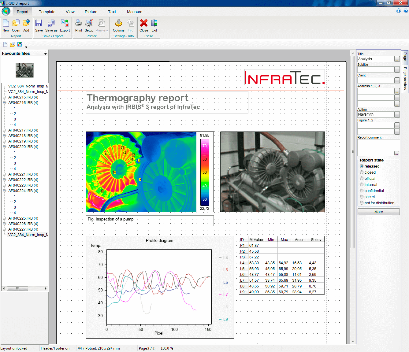 Thermographic Software IRBIS® 3 report